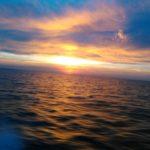 gulf of mexico sunrise